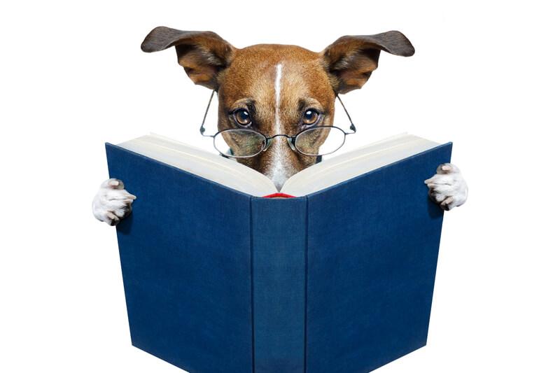 當論文投稿到頂尖國際期刊後,審閱者是如何看待我的研究成果?