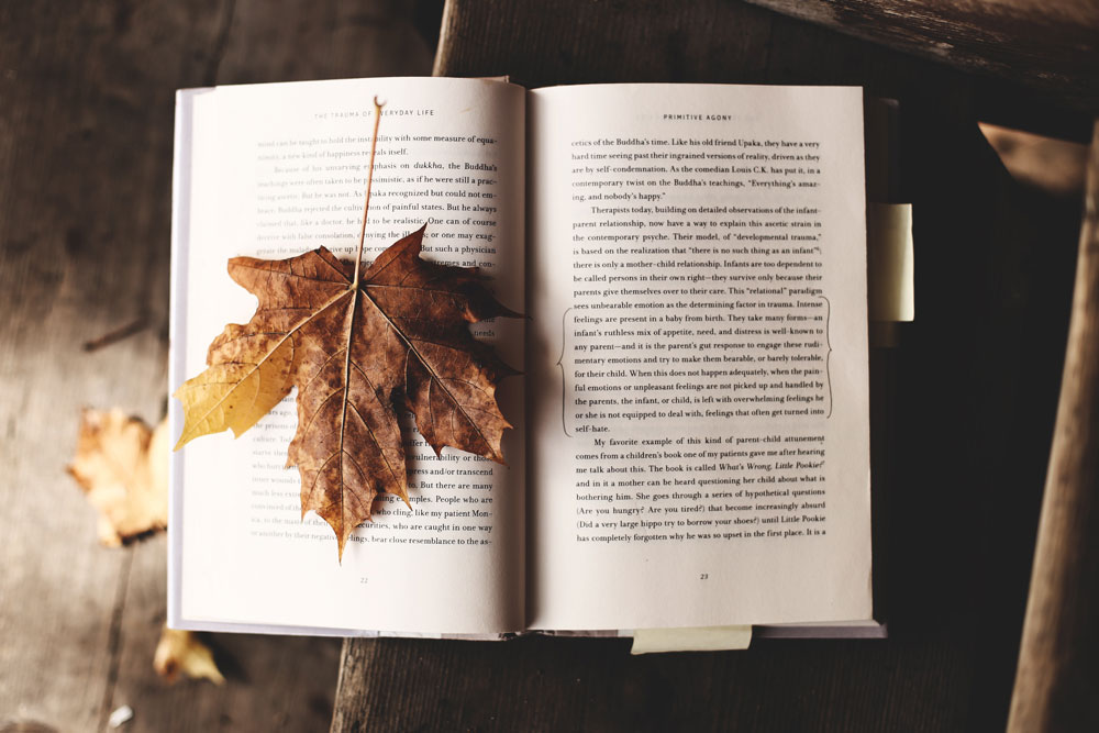 如何在學術研究寫作中使用英文as a result?